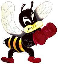 fighting bee
