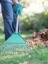 yard work