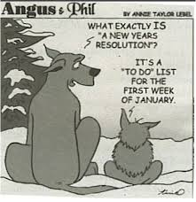 new years resolution funny