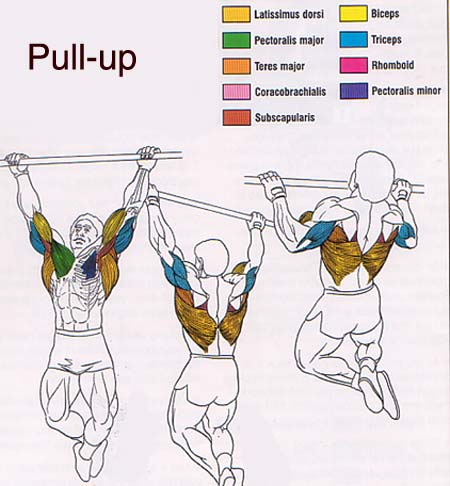 pullup